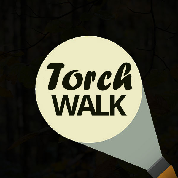 Ringinglow Walks torch walks logo